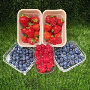 Boxes of strawberries, raspberries and blueberries